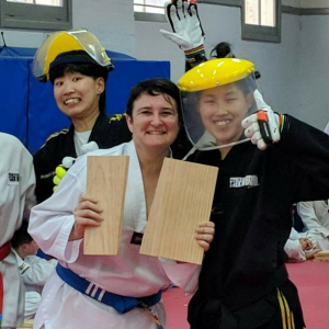 taekwondo board breaking